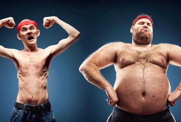 در طول روز چند کالری بخوریم تا چاق یا لاغر بشیم؟