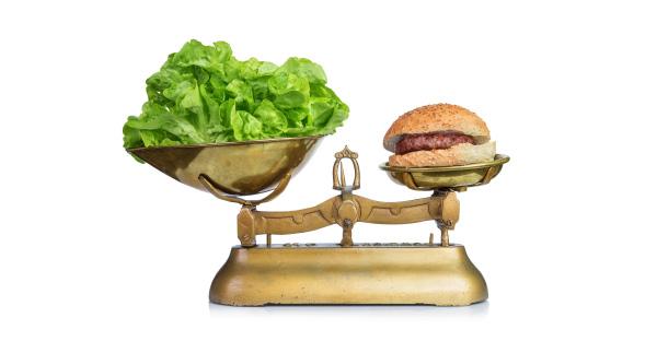 مقایسه-پروتئین-گیاهی-و-پروتئین-حیوانی