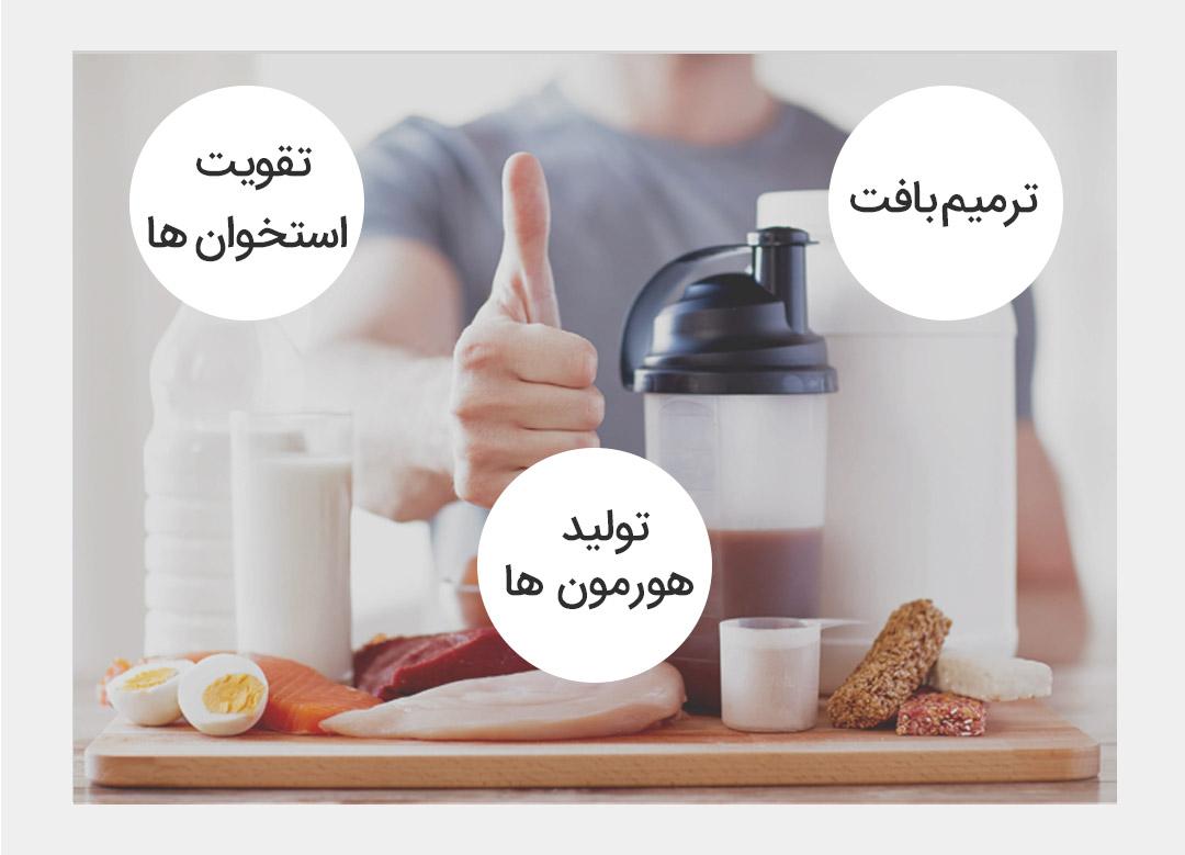 چرا باید به اندازه پروتئین بخوریم؟ چقدر بخوریم خوبه؟
