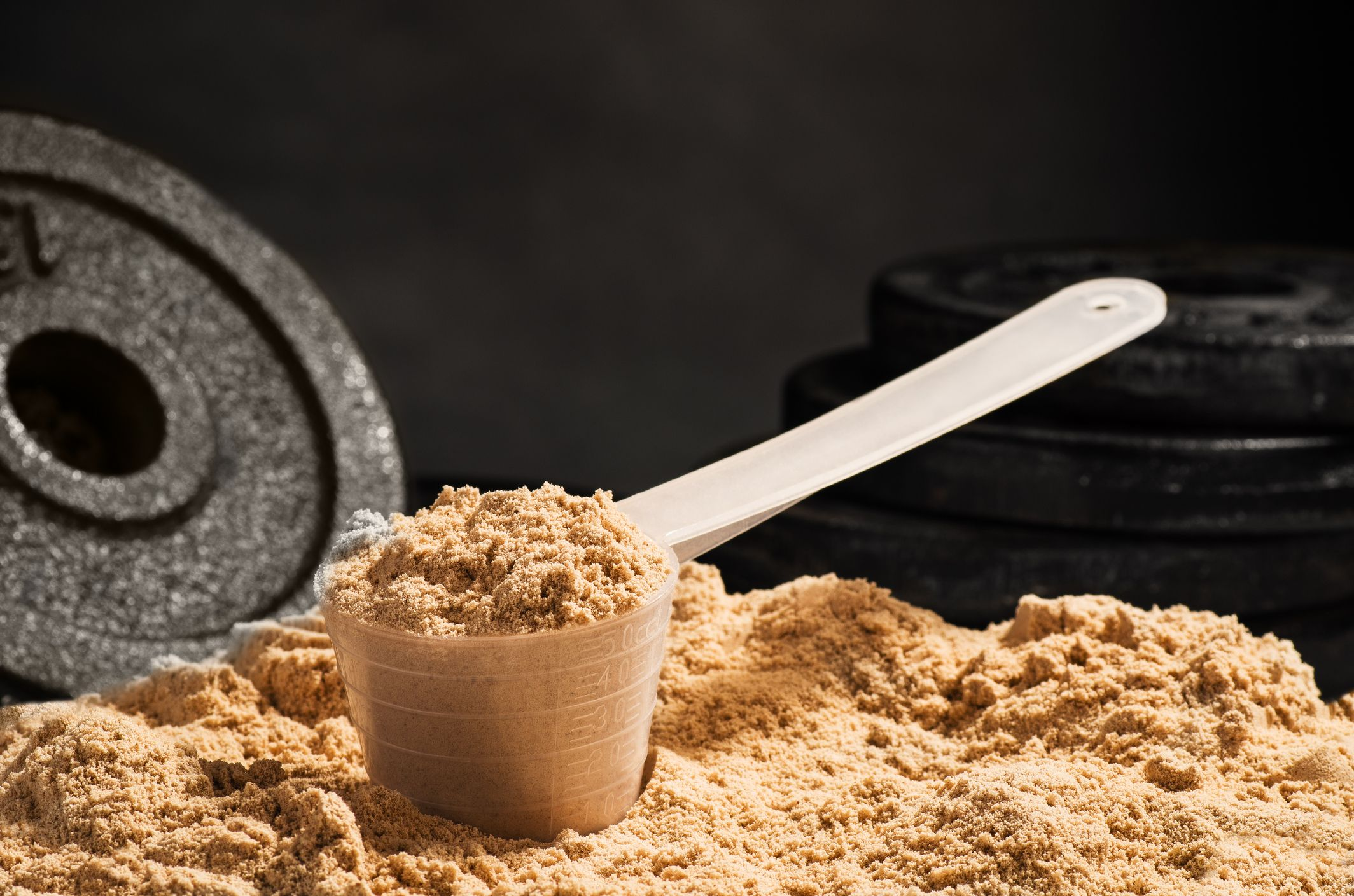 فواید پودر پروتئین چیه؟